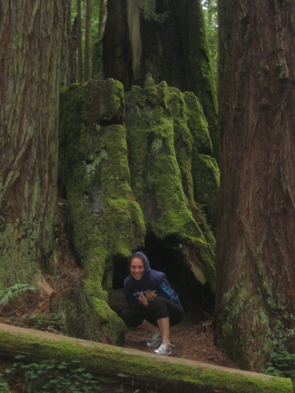 Michelle explores some redwoods in California!