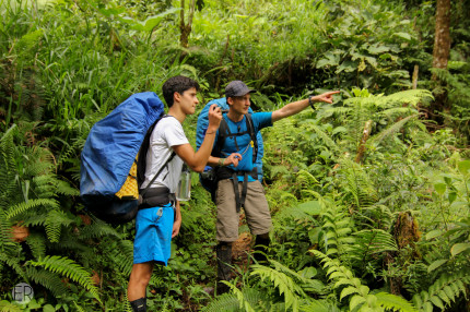 Rainforest Hike & Homestay